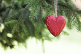 Red wooden Heart with Pine tree — Стоковое фото
