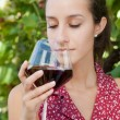 Wine Tasting in Vineyard — Stock Photo