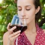 Wine Tasting in Vineyard — Stock Photo #36715183