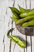 Broad Bean — Foto de Stock