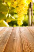 Picnic table in the nature — Foto de Stock
