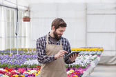 Men working at greenhouse with a tablet — Stock Photo