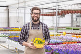 Male florist — Stock Photo