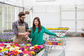 Woman Buying Potted Plants — Photo