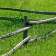 Stock Photo: Fence on green