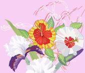 Hibiskus i iris na różowym tle — Wektor stockowy