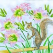 Squirrel and Pink Lilies Flowers - Stock Photo