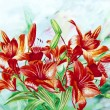 Stock Photo: Claret Lilies