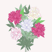 Bouquet with two pink and white peonies — Stock Vector