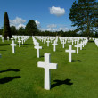 Stock Photo: Crosses in green field