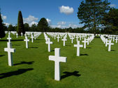 Crosses in the green field — Stock Photo