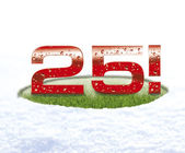 25 twenty five snow — Stock Photo