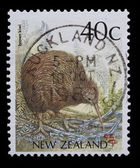 New Zeland stamp with a brown kiwi picture — Stock Photo