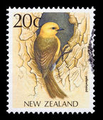 New Zeland stamp with a yellowhead picture — Stock Photo