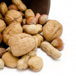Various kinds of nuts — Stock Photo