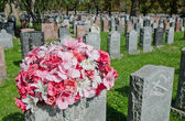 Gravestones and flowers in Montreal Cemetery — Stock Photo