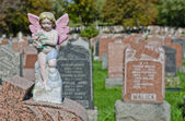 Gravestones and Cherub in an american Cemetery — Stock fotografie