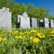 Aligned headstones in a cemetary — Stock Photo