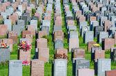 Wiele nagrobków na cmentarzu — Zdjęcie stockowe