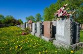 Wyrównany nagrobków na cmentarzu — Zdjęcie stockowe