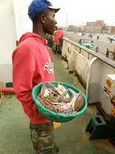 The seller of sea delicacies — Stock Photo