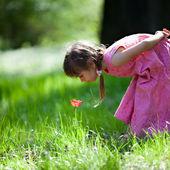小さな女の子のスニッフィング花 — ストック写真
