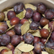 Prepared for pickling plums — Stock Photo #24060321