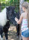 Mała dziewczynka i kucyk — Zdjęcie stockowe