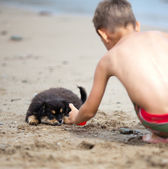Puppy and boy — Stock Photo