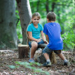Stock Photo: Teeter-totter in wood