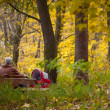 Grandpa with trolley in the Autumn park — Stockfoto