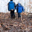 Children walking in a forest — Stock Photo