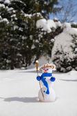 小可爱的雪人 — 图库照片