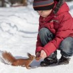 Постер, плакат: Squirrel and little boy