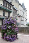 Summer in Pau — Stock Photo