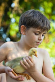 Little boy with gosling — Stock Photo
