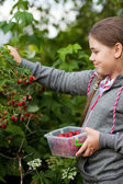 Menina no jardim — Fotografia Stock