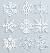Snow decorations. Set of paper snowflakes — Stock Vector