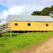 Stock Photo: Old shearing shed