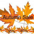 Autumn sale concept — Stock Photo