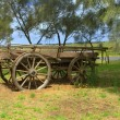 Old horse drawn wagon — Stockfoto #27682187