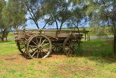 Staré koně tažené vůz — Stock fotografie