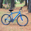 Foto Stock: Mens blue bicycle