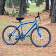 Stock Photo: Mens blue bicycle