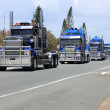 Convoy of blue trucks on highway — Stock Photo #34334805