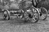 Alte pferd gezeichneten wagen — Stockfoto