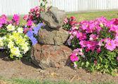 Feng shui rocks in flower garden — Stock Photo