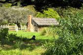 Old wooden Australian settlers cottage — Stock Photo
