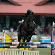 Equestrian sport — Stock Photo