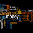 Wealth management portfolio info text graphics and arrangement concept — Stock Photo #32160047